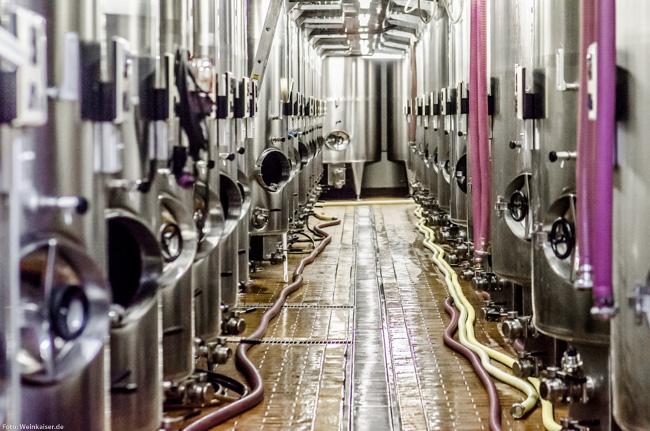 Die neue Kellerei von Champagne Gosset in Epernay