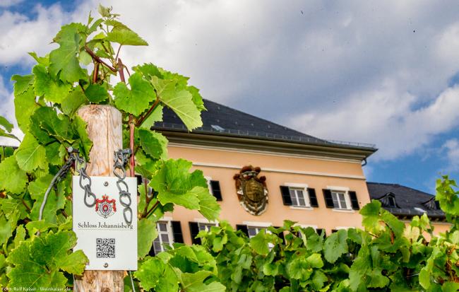Schloss Johannisberg mit Weinbergsschild